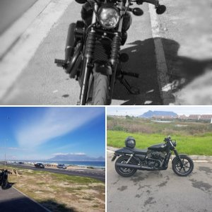 Cape Town Harley